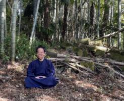 名無き仙人と森と石